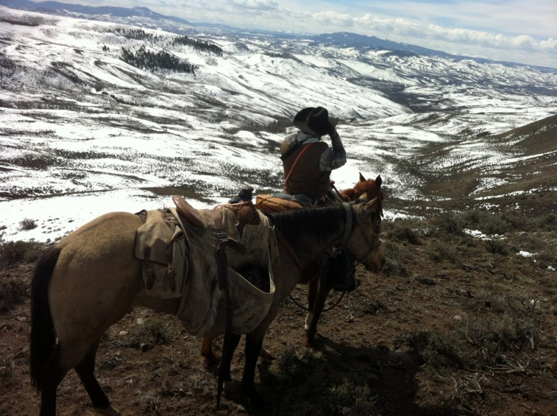 Clayton Wilson scouts for lions on horseback.