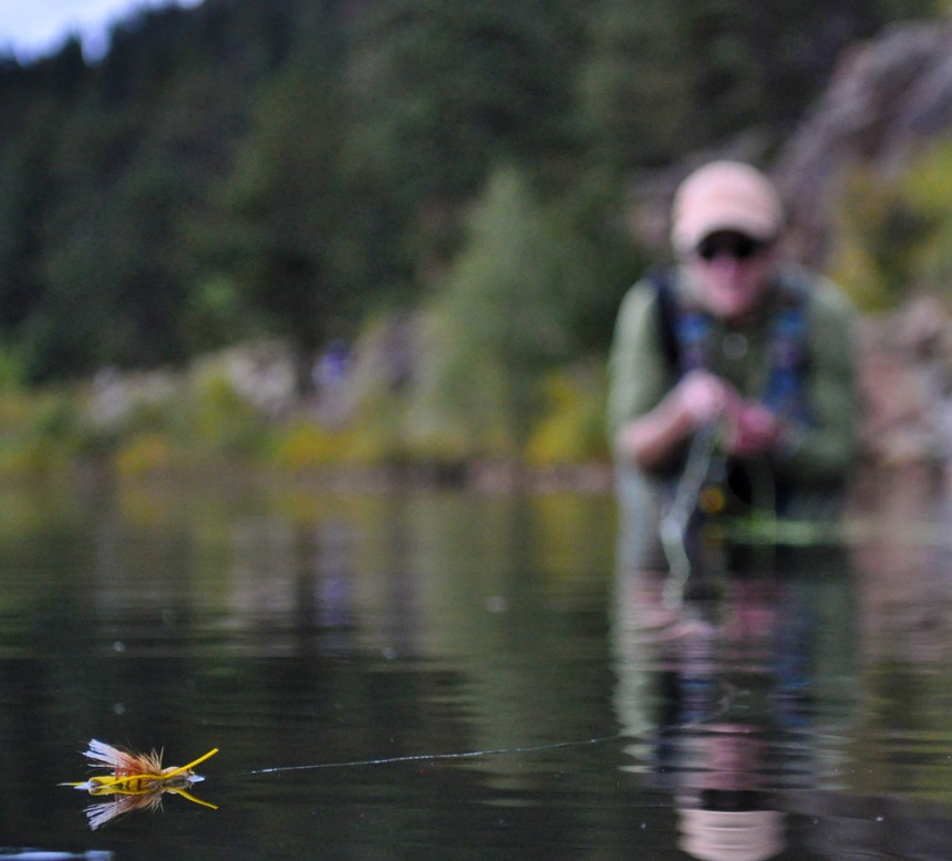 fly fisherman awaits a strike on a foam hopper at Lily Lake