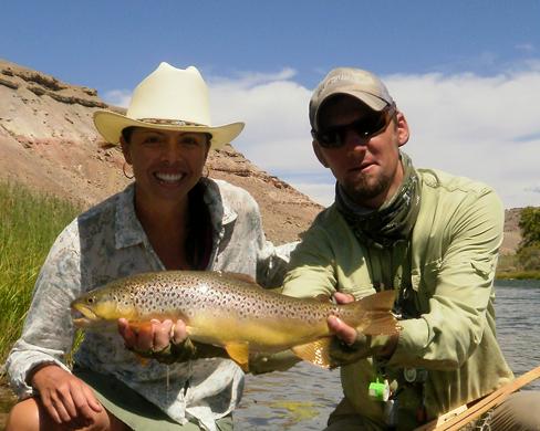 Uncompahgre River brown trout