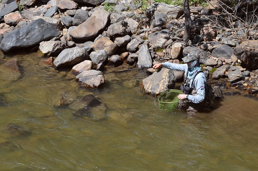 Blog-Fly-Fishing-Clear-Creek-8-8-2014-Wayne-D.-Lewis-DSC_0268
