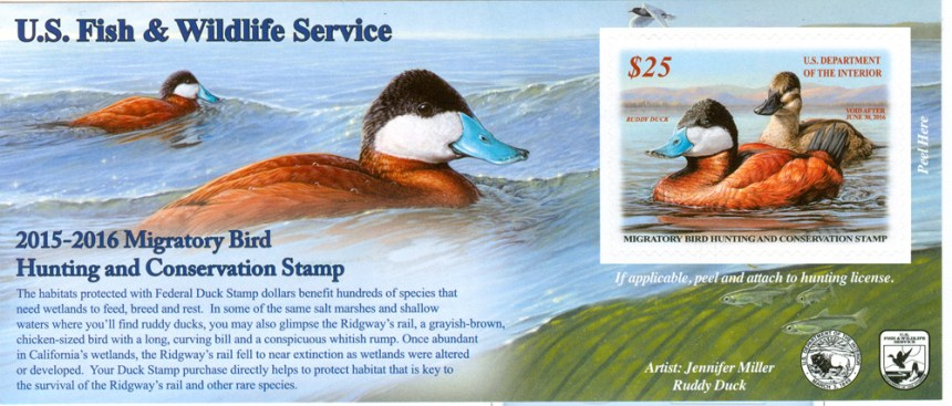 Waterfowl hunting archives colorado outdoors online for Colorado fishing license age