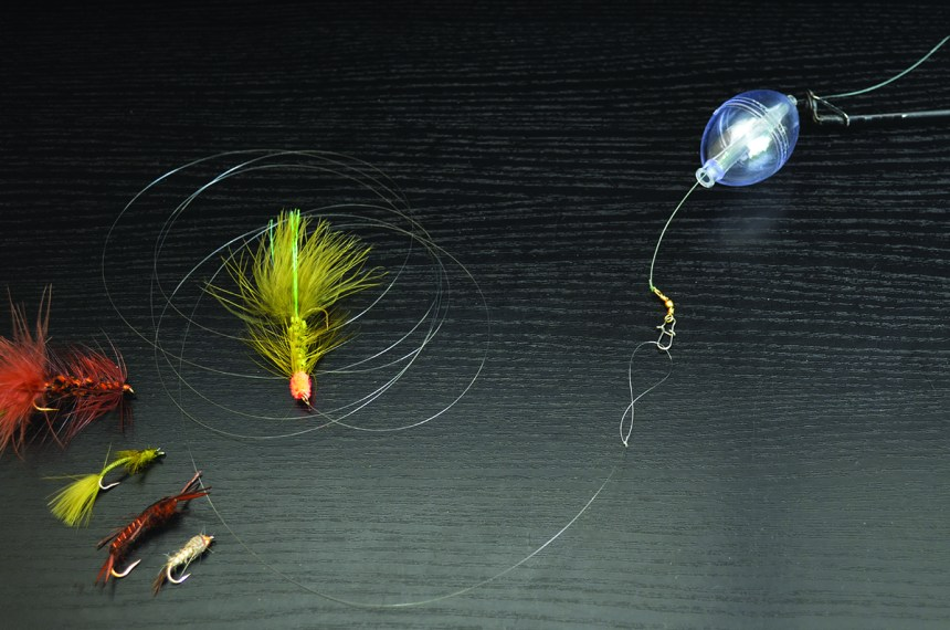 Fly-and-bubble-Wayne-D-Lewis-DSC_0109