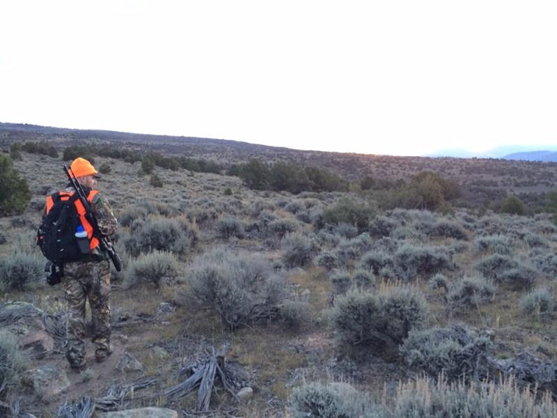 mule-deer-hunt