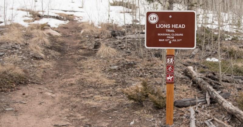LionsheadSign