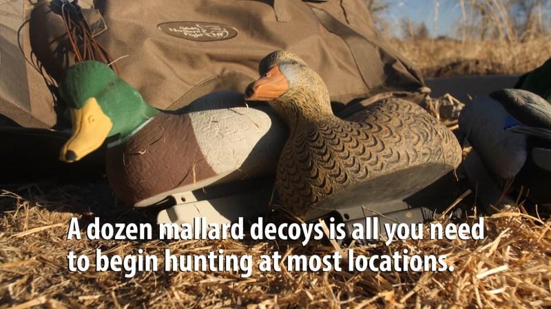 Mallard Decoys