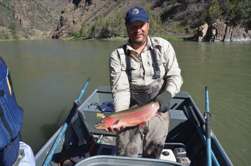 Aquatic Biologist Eric Gardunio, holds a whirling-disease resistant rainbow trout
