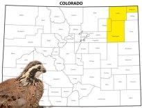 Map - South Platte River (eastern Morgan, Washington, Logan, Sedgwick):