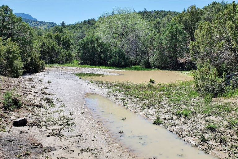 A long-standing old ranch road was washed away to reveal a creek bed, hidden for decades.