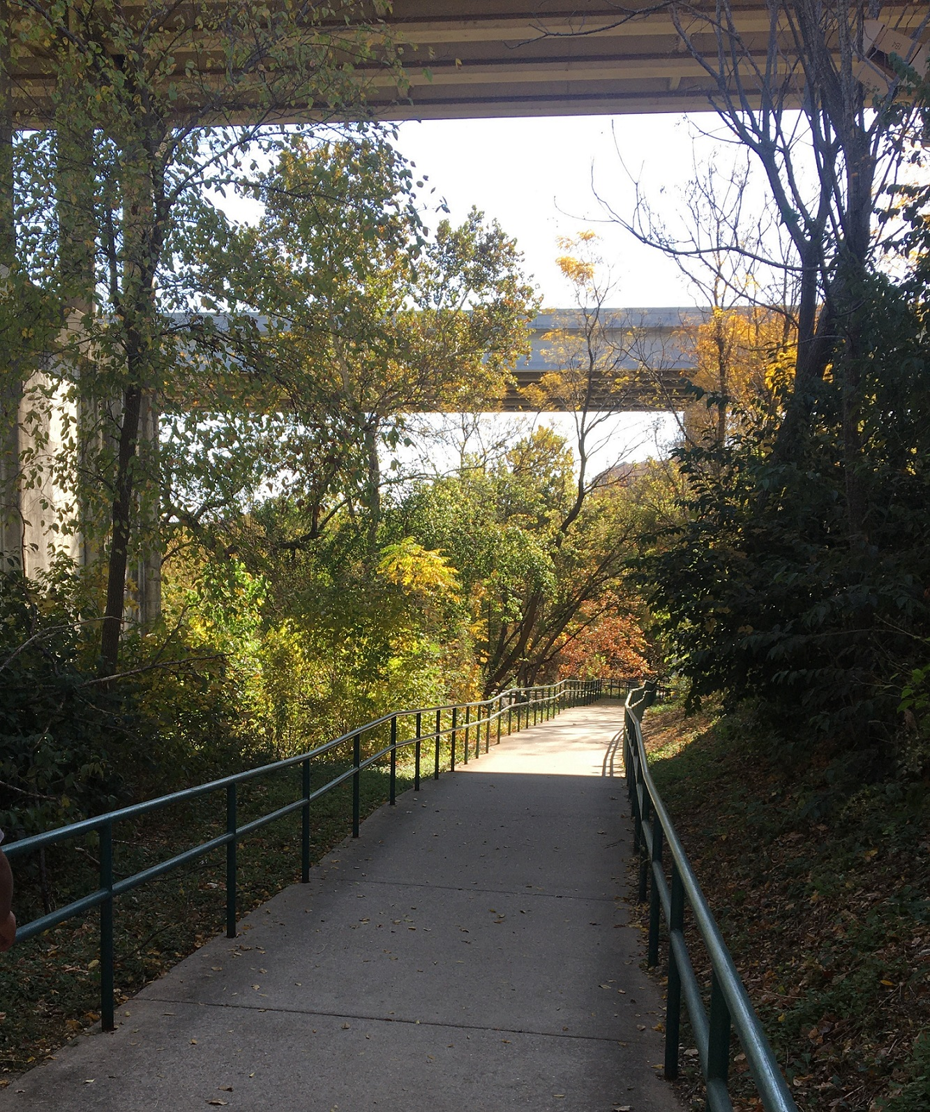 Reminder – Randy Morrow Trail Walk on Nov 14th