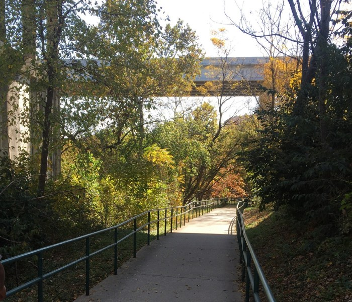 Reminder – Randy Morrow Trail Walk on Nov 14th