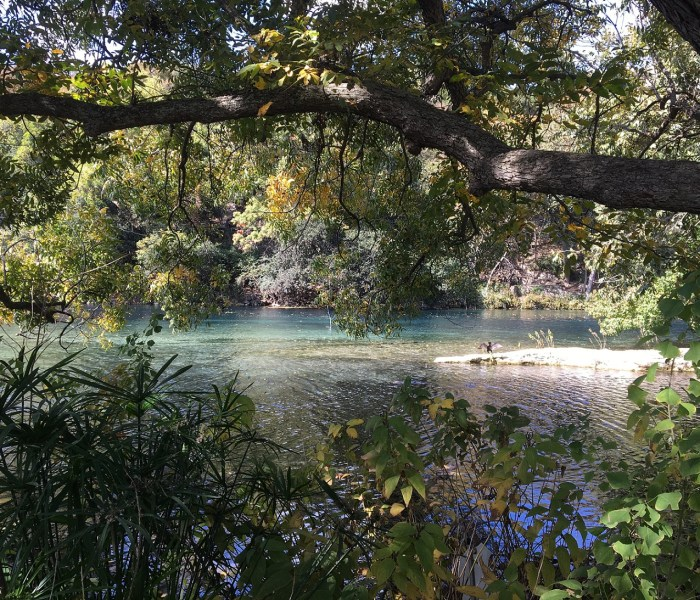 Photos from New Braunfels Walk on Nov 7th