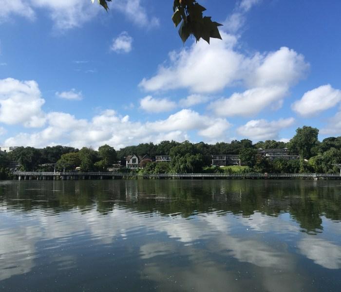 Photos from Lady Bird Lake Walk on Aug 28th