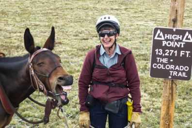 Horses acclimate, too.