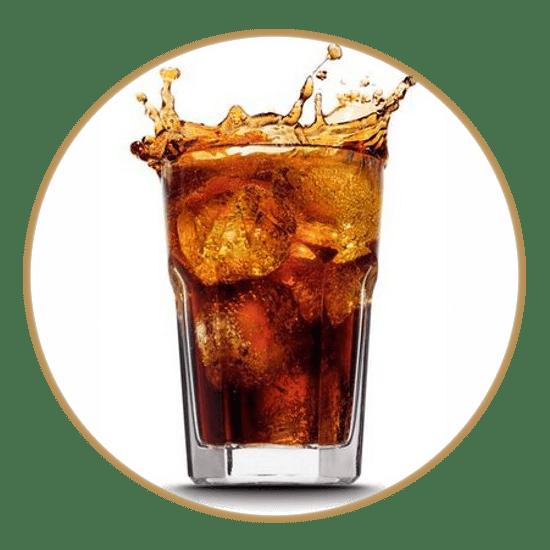 16.9 oz Sodas