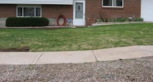 Greening Up Lawn