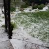 Hail Damage in May