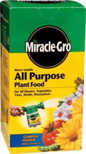 An all purpose water soluble fertilizer will keep your annual flowers green and flowering.