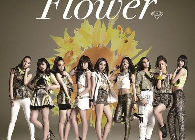FLOWER – Sun and Sunflower (太陽と向日葵)