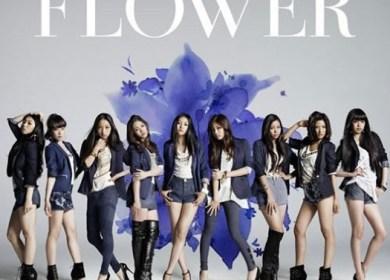 FLOWER – Still