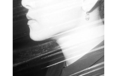 Hoya (호야) – Angel