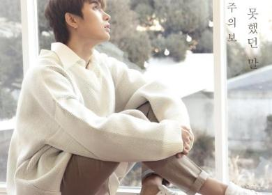 Jaehan (Spectrum) – The Untold Story (하지 못했던 말)