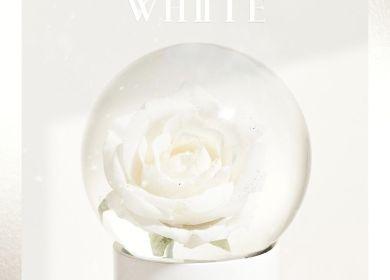 THE BOYZ – White (화이트)
