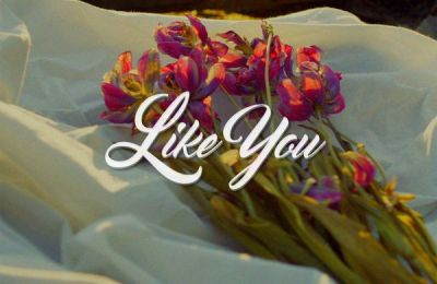 Hoody (후디) – Like You