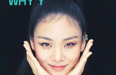 BIBI (비비) – WHY Y (Feat. Tiger JK)