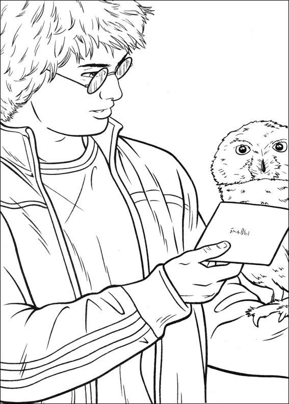 Harry Potter Dibujos Para Imprimir Y Colorear Colorear