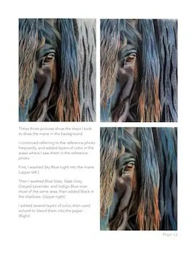 Black Friesian Horse Tutorial Page 13