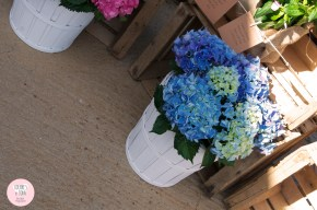 colores-de-boda-seating-plan-flores-hortensias-azules