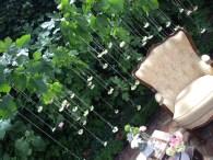 colores-de-boda-photobooth-sillones-vintage-maria-jesus-victor23