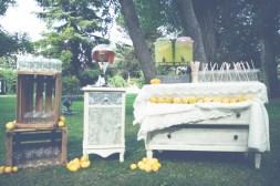 colores-de-boda-24-puesto limonada