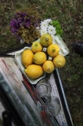 colores-de-boda-8.6-puesto-limonada