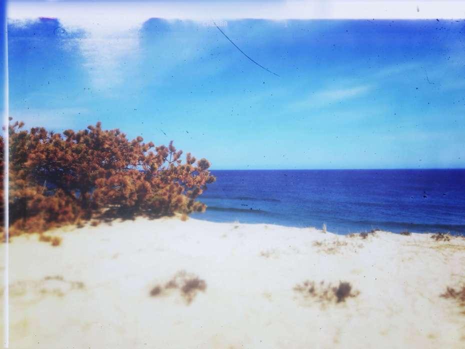 Strand an der Marconi Beach