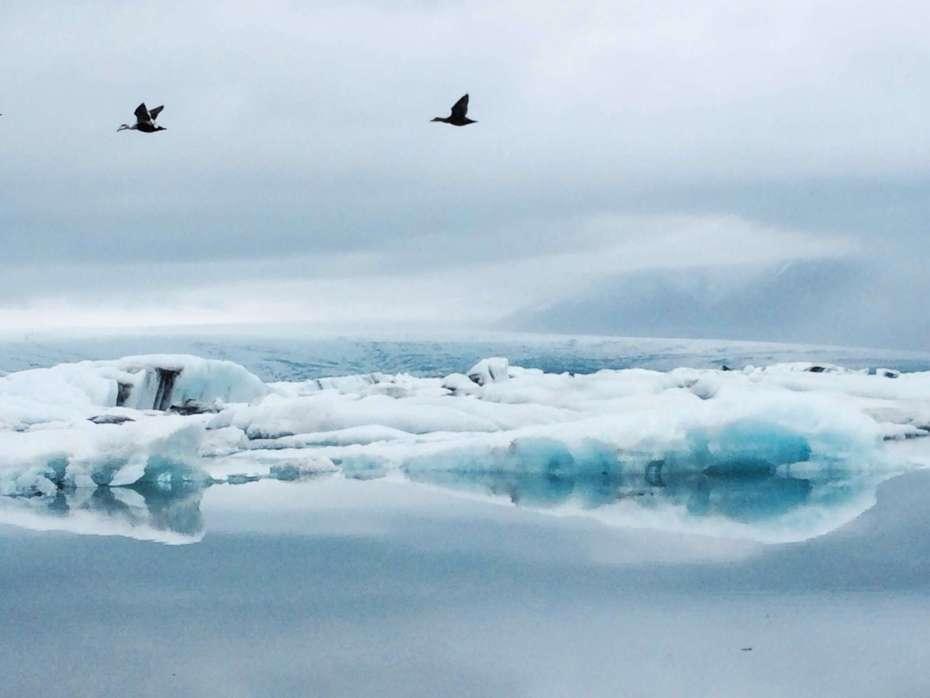 Eisberge auf der Strecke