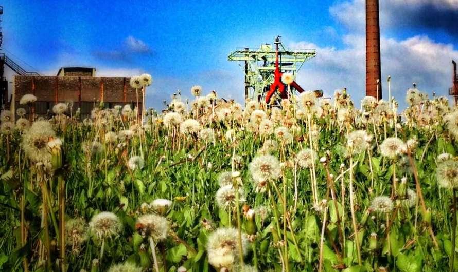 Die 10 schönsten Industriedenkmale im Ruhrgebiet