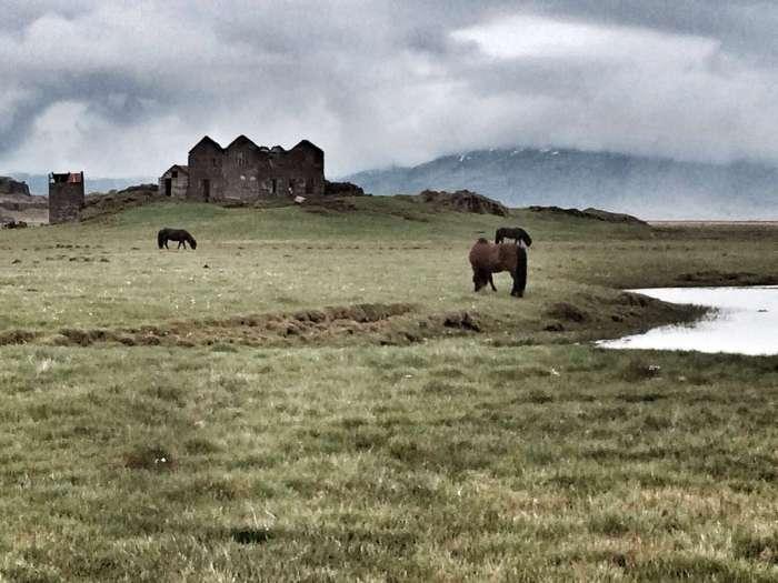 Ruinen und Pferde