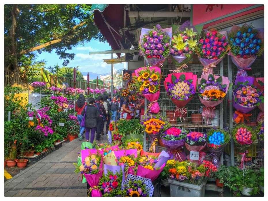 Blumenmarkt in Mond Kok