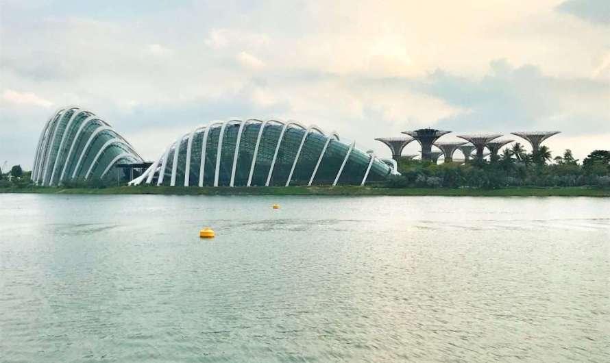 Cloud Forest – der künstliche Regenwald in Singapur