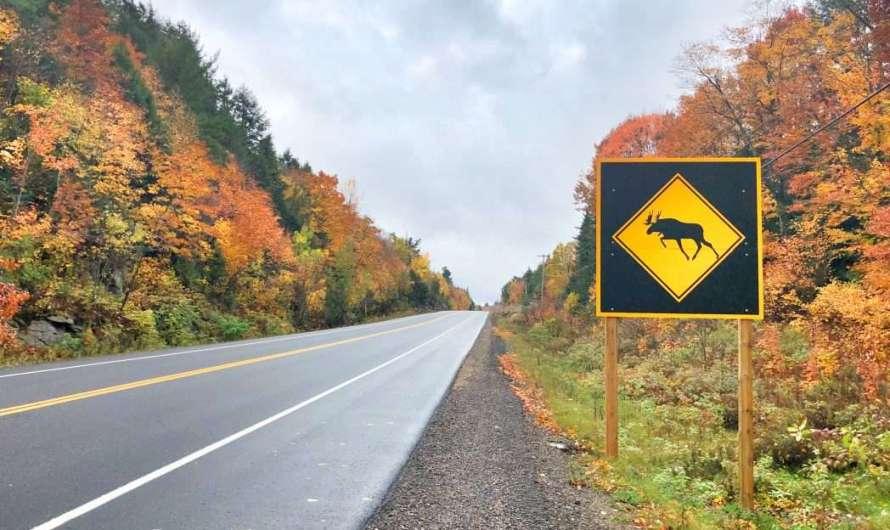 Verkehrsregeln in Kanada