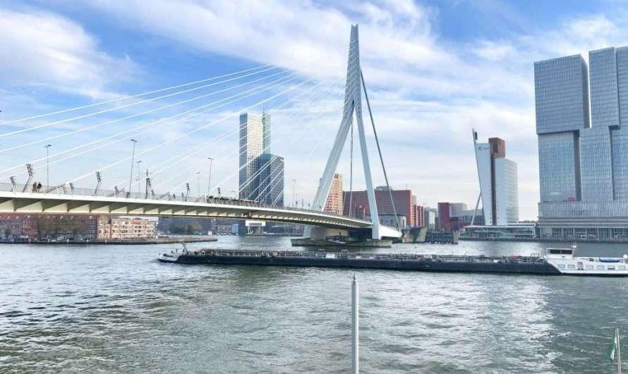 Die Erasmusbrücke in Rotterdam
