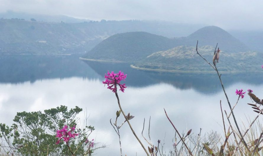 Wandern am Cotacachi und Cuicocha