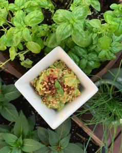 Avocado sauce from the basil source