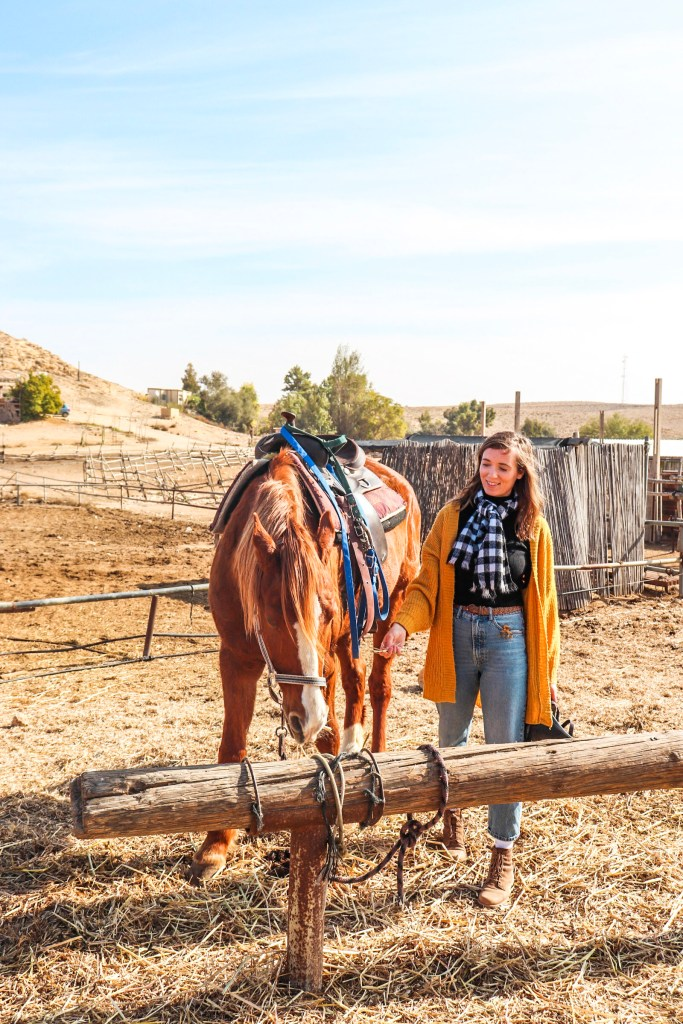 Horseback riding in the Ramon Crater