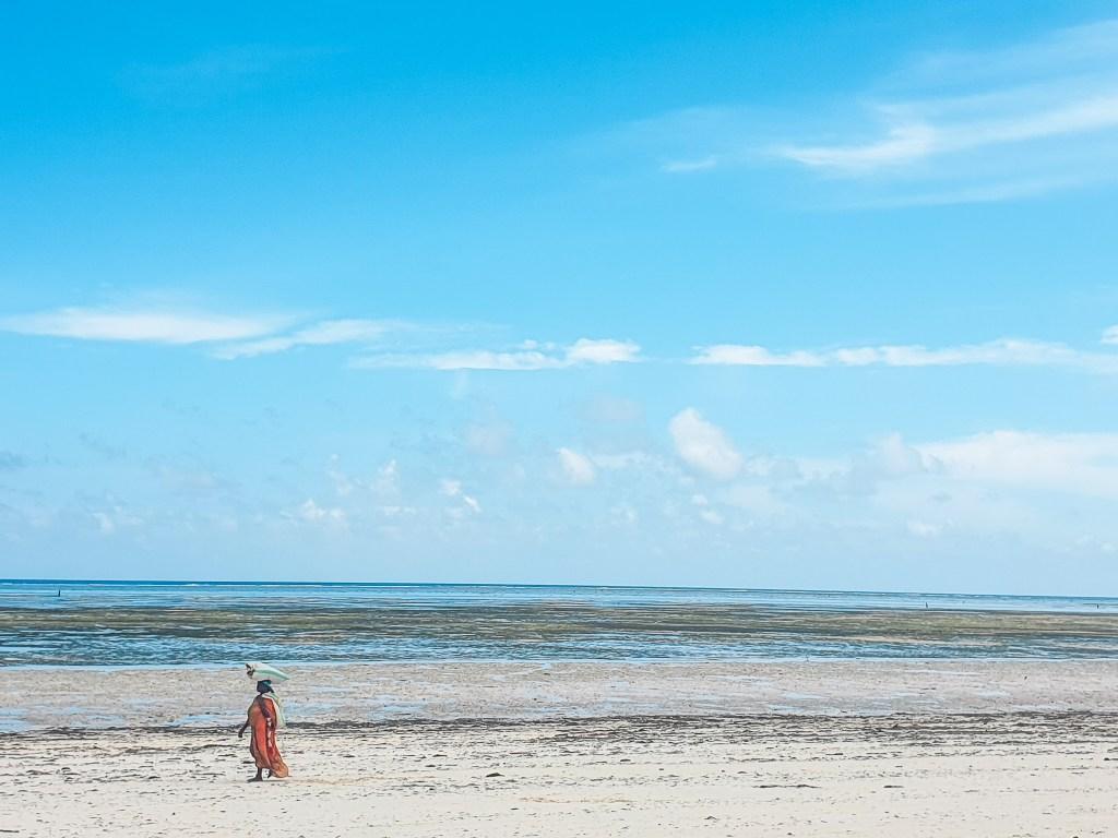 Paje Bwenjuu Zanzibar Itinerary