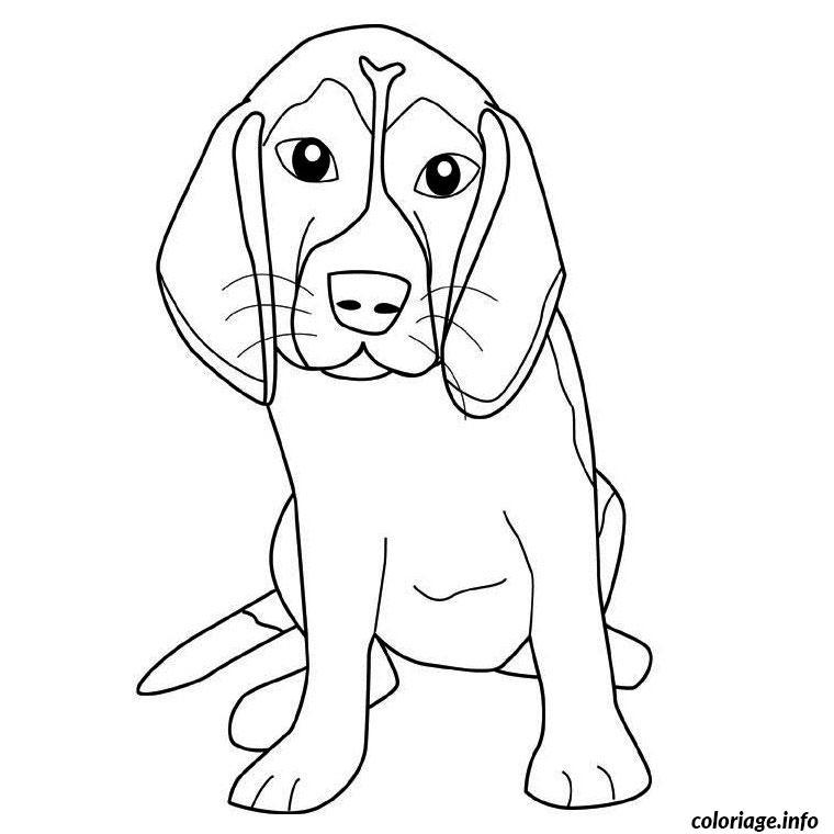 Coloriage Chien Beagle
