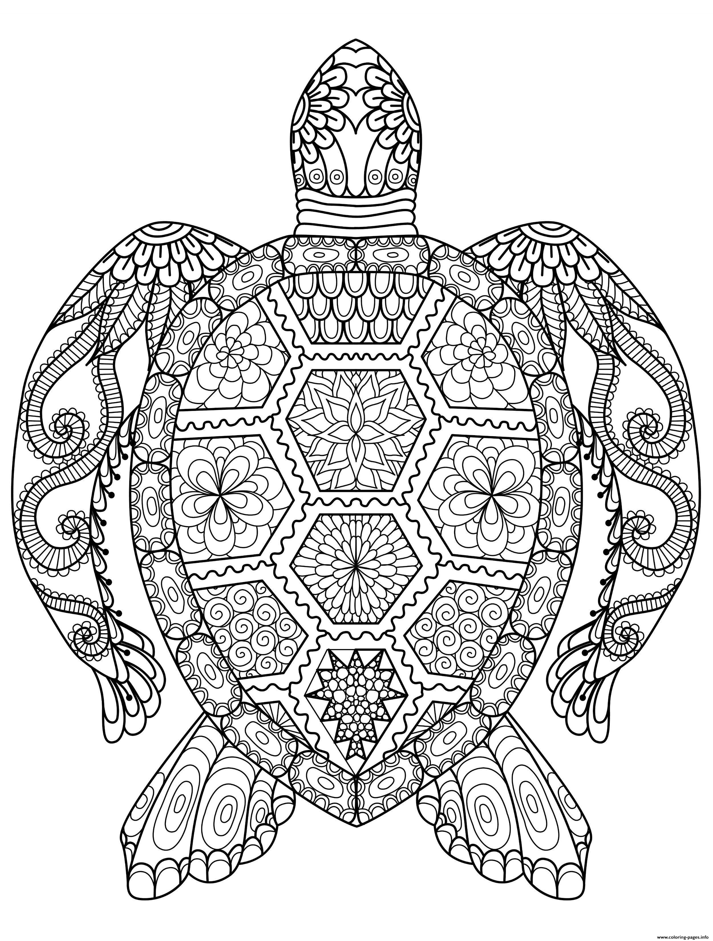 Adult Zentangle Zen Turtle Coloring Pages Printable