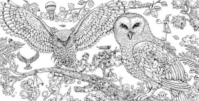 Animorphia Owls Hard Adult Animal Coloring Pages Printable