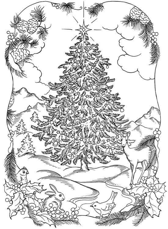 christmas trees coloring pages # 71
